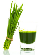 Piping Rock Wheat Grass Juice Powder