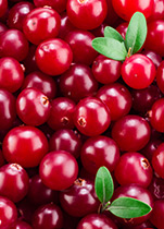 Piping Rock Cranberry Supplements