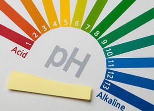 Buy Urine PH Test Strips   Sal...